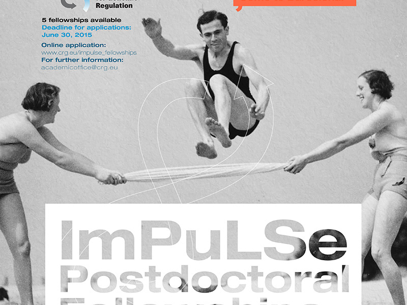 ImPuLSe Postdoctoral Fellowships